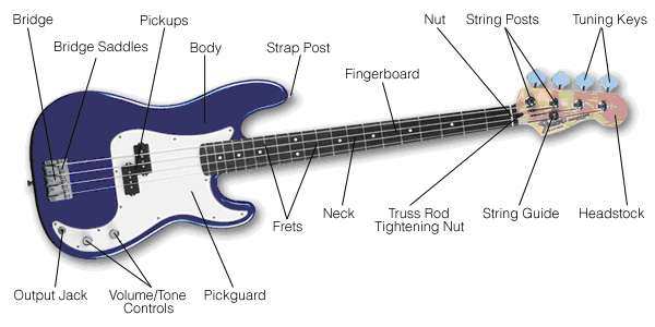 Parts of bass guitar