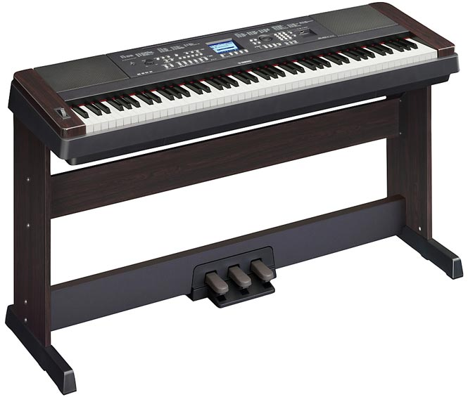 Best Keyboards and Pianos for Beginners