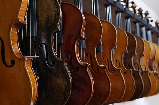 Care and Maintenance of Orchestral Stringed Instruments
